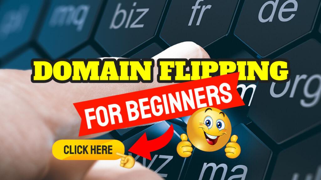 domain flipping for beginners